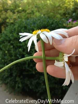 daisy chain necklace 4