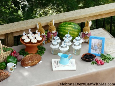 peter rabbit party 11