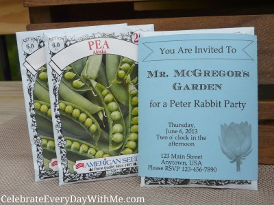 peter rabbit party 13