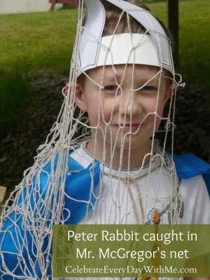 peter rabbit party 14