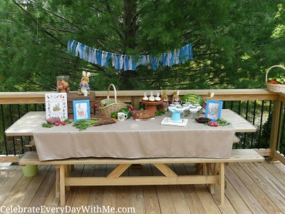 peter rabbit party 8
