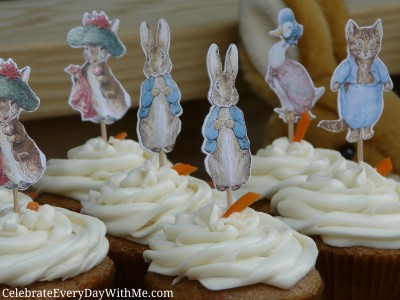 peter rabbit party 9