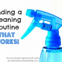 Simply Organized Life:  A Cleaning Routine That Works!