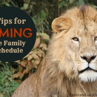 Tips for Taming the Family Schedule