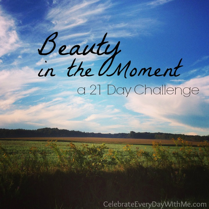 Beauty in the Moment Challenge