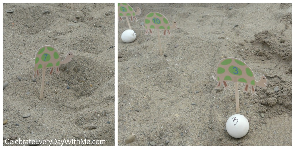 turtle egg rescue obstacle course