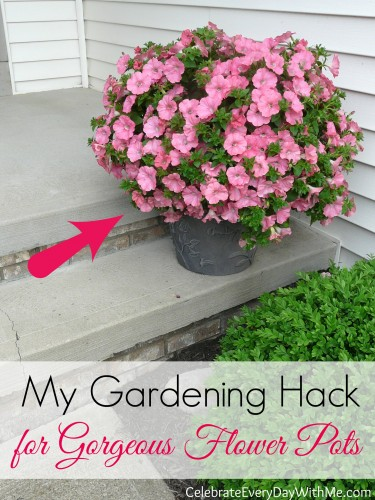 My Gardening Hack for Gorgeous Flower Pots