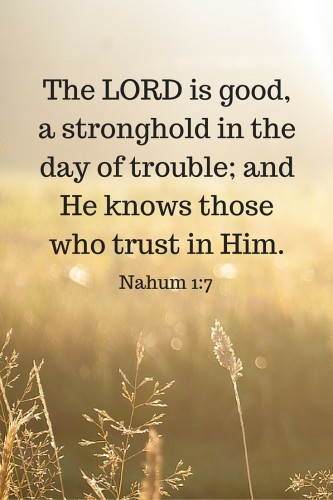 The LORD is good, a stronghold in the day