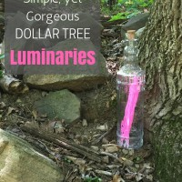 How to Make Simple, Yet Gorgeous Dollar Tree Luminaries