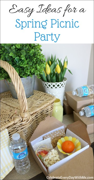 Easy Ideas for a Spring Picnic Party - Celebrate Every Day With Me