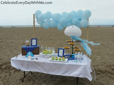 octonauts party on the beach