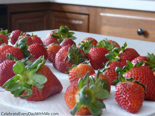 strawberries-ready-to-dip-500x375