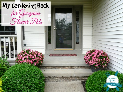 gardening hack for gorgeous flower pots