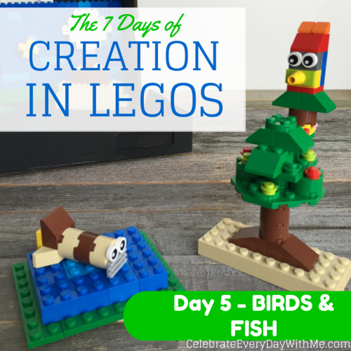 The 7 Days of Creation. Day 5 - Birds & Fish