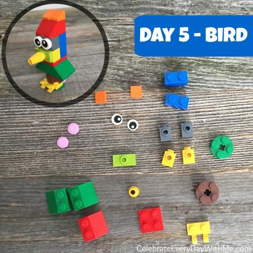 day 5 - bird