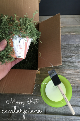 DIY Mossy Pot for Your Spring Table