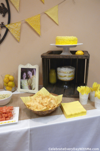Lemonade Party (15)