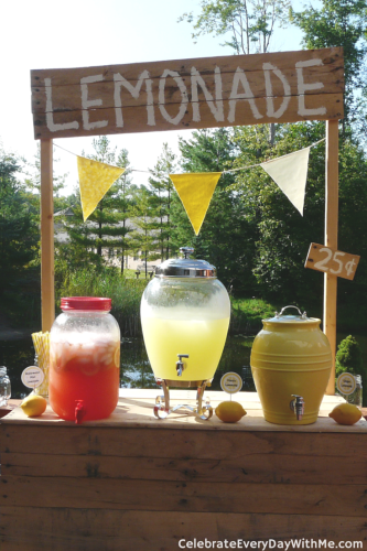 Lemonade Party (20)