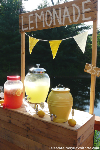 Lemonade Party (21)