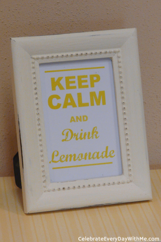 Lemonade Party (4)