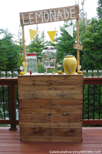 Lemonade Party (5)