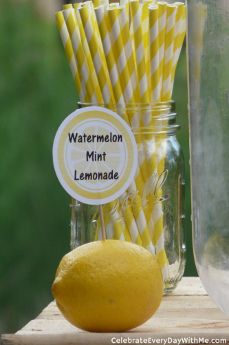 Lemonade Party (8)