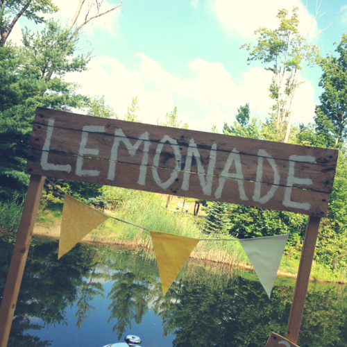 Lemonade Stand Party-