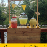 Our Lemonade Party
