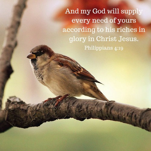 And my God will supply all your needs
