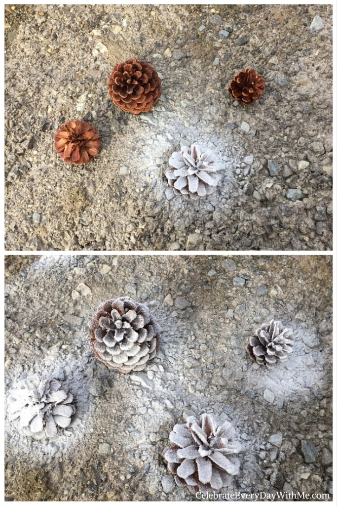 Frosting Pinecones for the Buffet Table