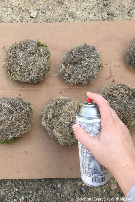 How to Make Sweet Birds Nests for a Ladies Brunch (9)