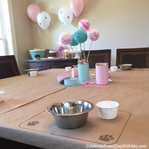 A playful dog and cat birthday party (21)