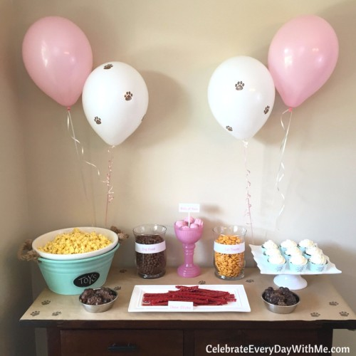 A playful dog and cat birthday party (7b)