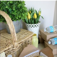 Easy Ideas for a Spring Picnic Party