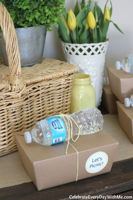 Fun & Easy Ideas for a Spring Picnic Party (27b)